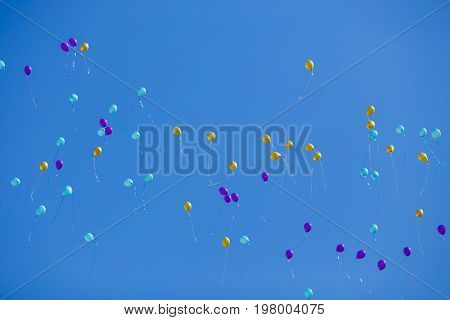 Floating Bright Multicolored Balloons High In The Blue Cloudless