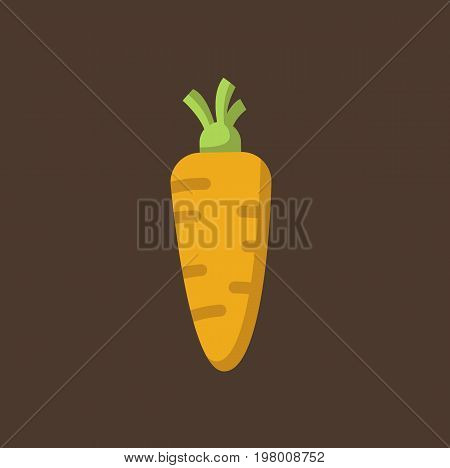 Carrot icon isolated on background. Carrot vegetable. Vector stock.
