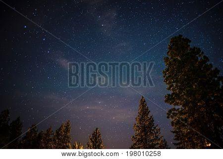 Night Sky With Ursa Minor And Polaris