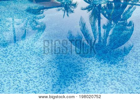 Palm trees reflection in swimming pool tourist resort in Cuba