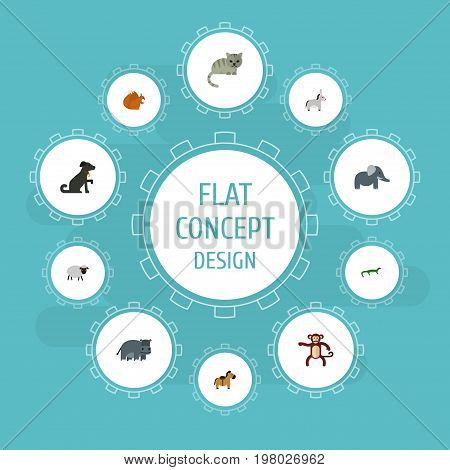 Flat Icons Mutton, Trunked Animal, Chipmunk And Other Vector Elements