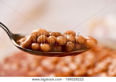 closeup of a soup spoon full of baked beans