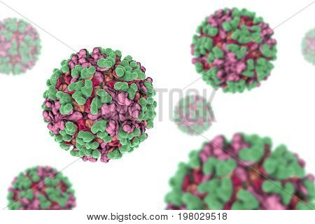 Venezuelan equine encephalitis virus, 3D illustration. An RNA Alphavirus from Togaviridae family transmitted by mosquiotes which causes encephalitis in animals and humans