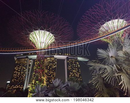 Supertree Grove in Gardens By The Bay with Marina Bay Sands on background, taken on November 20th 2016, Singapore