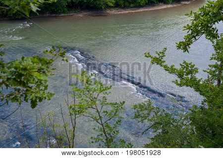 The rapids of a mountain river. Summer landscape.