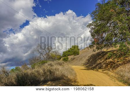 A drought dries up Topanga State Park near Los Angeles California