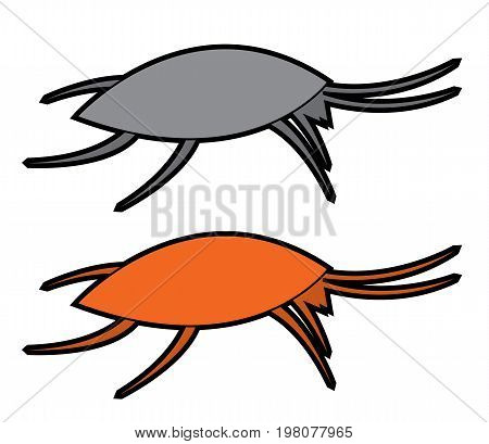 colorful and gray stylized picture of german cockroach vector set