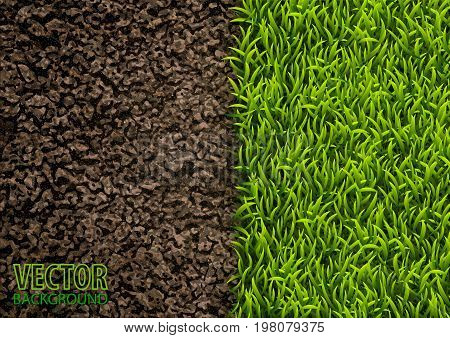 Image of soil and green grass texture. Natural texture. Overhead view. Vector illustration. Nature background.