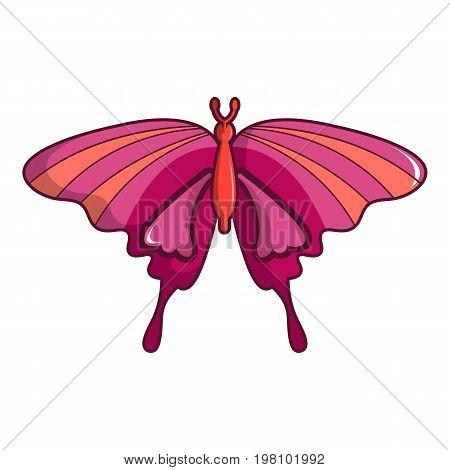 Butterfly papilio demoleus icon. Cartoon illustration of butterfly papilio demoleus vector icon for web design