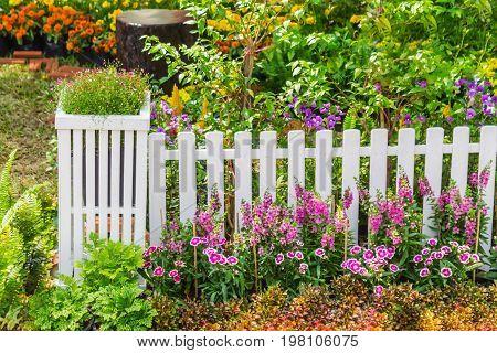 In Home Garden.