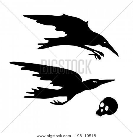 Crows. Skull. Diving, flying crows. Halloween element design.