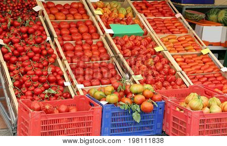 Many Ripe Tomatoes In The Boxes On Sale
