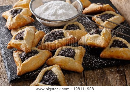 Jewish Hamantaschen Biscuits With Poppy Seeds And Powdered Sugar Close-up. Horizontal