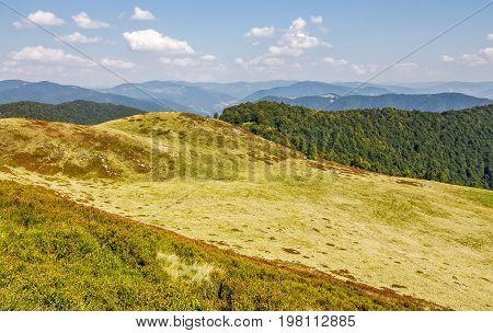 Grassy Hills Of Mountain Ridge