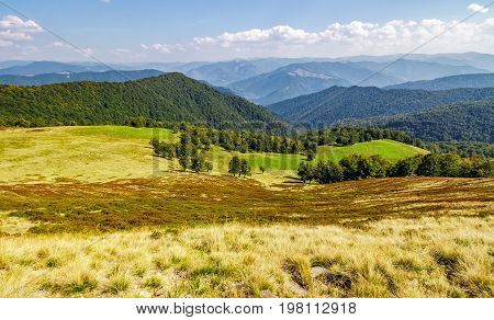 Forest On Hills Of Beautiful Mountain Ridge In Autumn