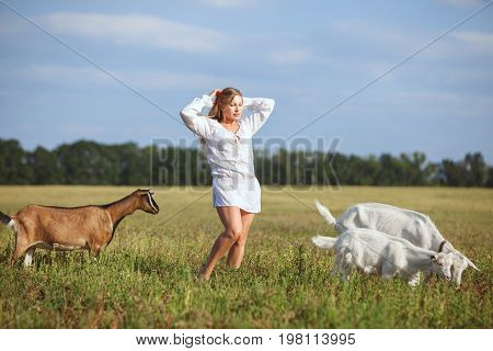 Woman is standing in a field next to graze domestic goats.