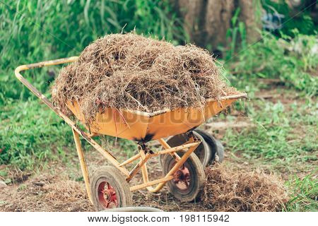 Thatched Vintage Color. Asia Rural Countryside Farmer Concept Background.