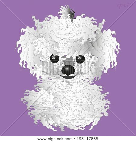 White fluffy dog Shaggy animal kind animal with black eyes and nose, two fluffy ear vector illustration