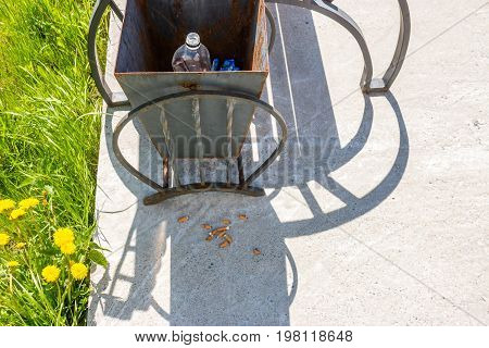 Garbage Urn In The Park And Cigarette Butts On The Ground