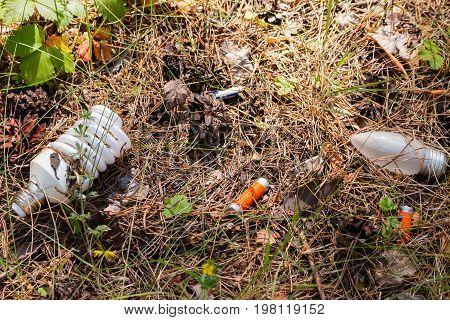 Hazardous Waste In The Forest - Environmental Pollution