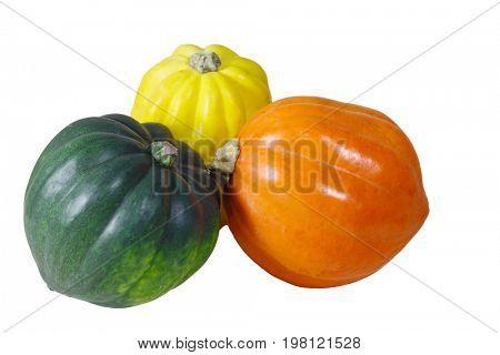 Orange, yellow, green pumpkin gourds isolated on white background