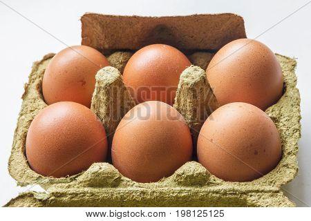 chicken eggs closeup in carton on white background