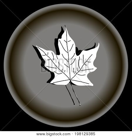 Icon white maple leave on grey plate.