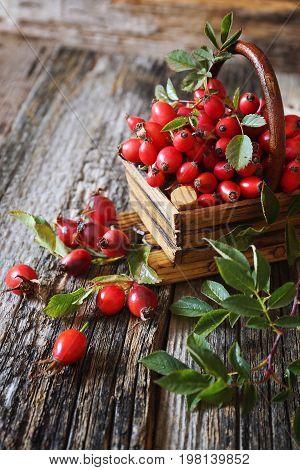 Ripe Rose hip berries in wooden basket