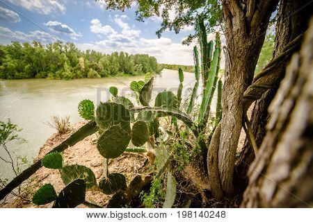 rio grande texas usa and mexico border