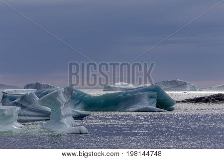 icebergs at dusk by Fogo Island, Newfoundland