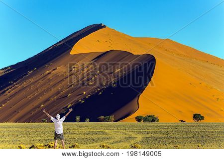 Man is delighted with the beauty of nature. Purple and yellow dune of the Namib desert. The concept of extreme and exotic tourism
