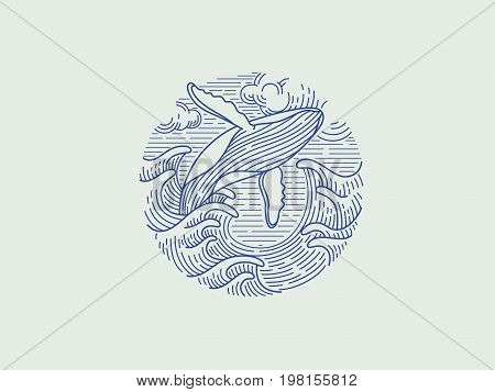 breaching humpback whale logo. icon. vector illustration