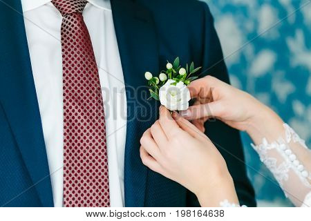 Bride pins boutonniere to groom's jacket. Close-up image Wedding preparation
