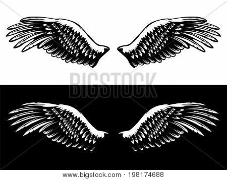 Wings Isolated