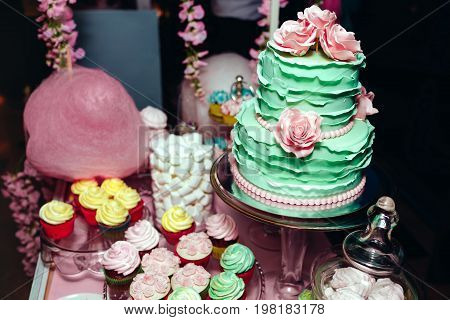Two-leveled Mint Colored Wedding Cake With Cream Roses, Macarons, And Marshmallows. Candy Bar In Pin