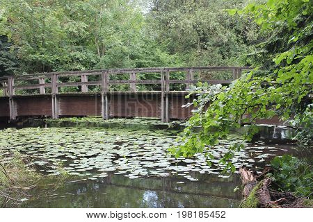 Old wooden bridge across a small river