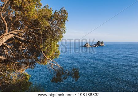 Montenegrin landscape with Sveta Nedjelja island and tilted pine tree view on the coast path to from Perazica Do to Petrovac. Adriatic seascape, Montenegro.