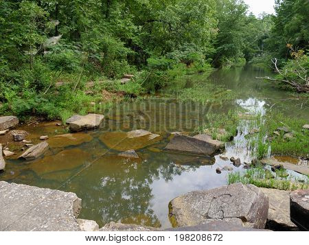 Stream with very slow flowing water in a forest