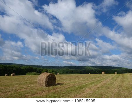 round hay bales lying in a country field under a blue cloudy sky