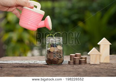 Money and plant with watering can and money tree Saving money concept concept of financial savings to buy a housetrees growing in a sequence of germination on piles of coins Growth business money.