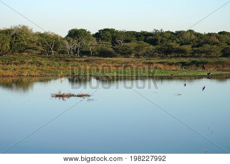 A Lake in the Swaziland National Park.