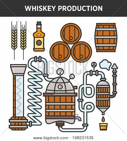 Whiskey production technology of whisky brewery making factory. Vector factory elements and details of fermentation copper and oak barrels, malt filtration or distillation station and product bottles