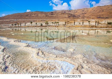 Summer day on the Dead Sea. The evaporated salt has developed into fantastic patterns. The concept of medical and ecological tourism