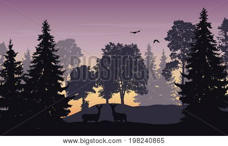 Vector realistic illustration of a deciduous forest with doe deer and flying birds under the sky with clouds