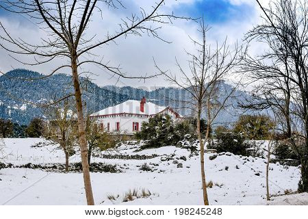 wintry snowy landscape. trees without leaves in front of a house.Arkadia. Greece