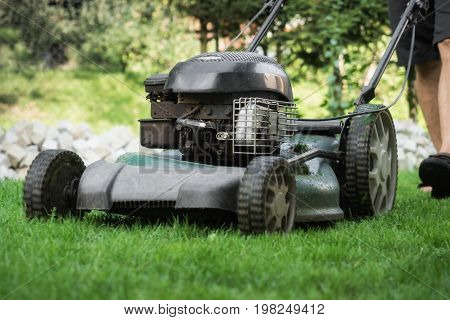 The lawn is mown with the lawn mower
