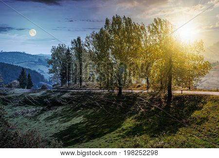 day and night time change concept. range of poplar trees by the road on hillside. beautiful day in mountainous countryside with sun and moon