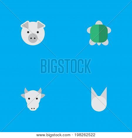 Elements Tortoise, Kine, Piggy And Other Synonyms Tortoise, Tomcat And Piggy.  Vector Illustration Set Of Simple Wild Icons.