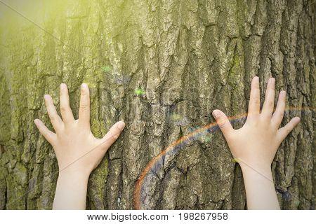 Child's hands hugging a tree.  Instagram effect.