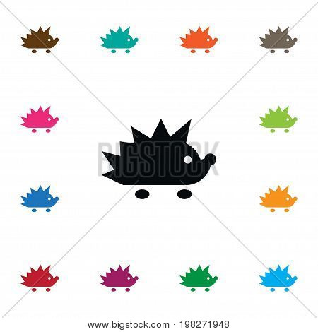 Crew Cut Vector Element Can Be Used For Crew, Cut, Hedgehog Design Concept.  Isolated Hedgehog Icon.
